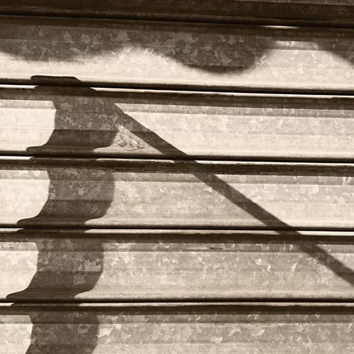 shadow n 184, 6:22 pm